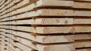 نحوه خشک کردن چوب برای نجاری